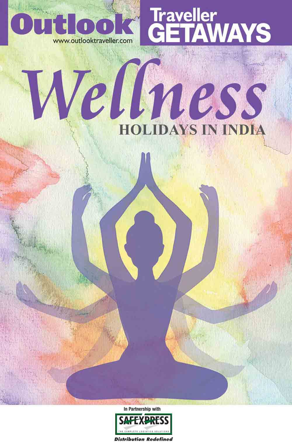 Wellness Holidays In India